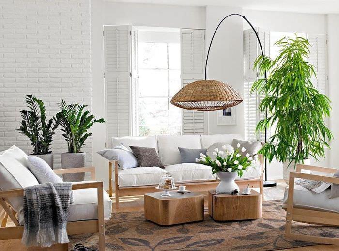 Живые растения в декоре жилой комнаты