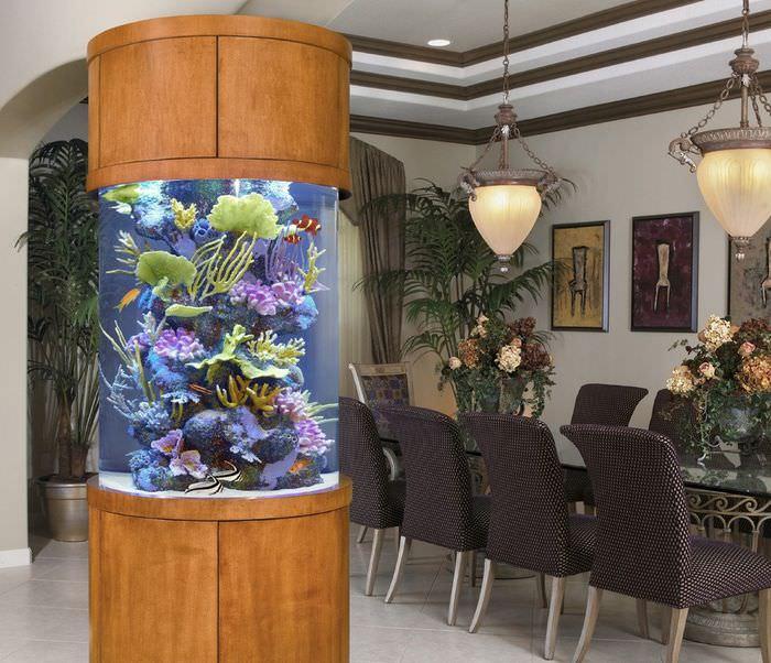 эксклюзивные уютные аквариумы фото
