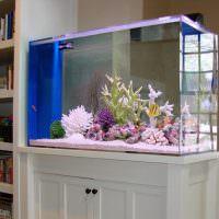Домашний аквариум на деревянной тумбе