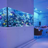 Дизайн гостиной с большим аквариумом