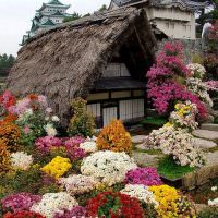 Дачный домик с камышовой крышей