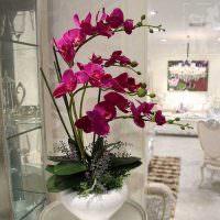 Искусственная орхидея в белой вазе