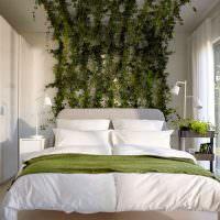 Вьющиеся растения в оформлении спального помещения