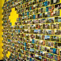 Желтая стена с цветными фотографиями