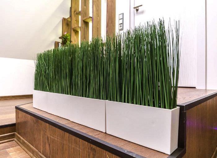Зеленые синтетические растения в белом контейнере