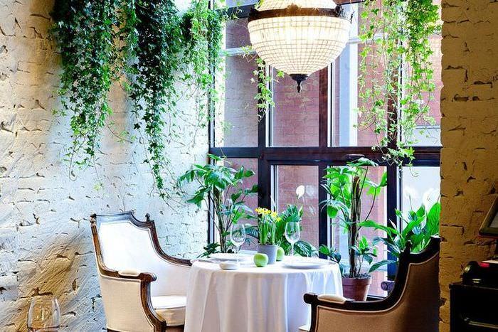 Зеленые лианы в интерьере жилой комнаты