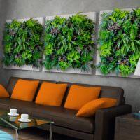 Модульные картины из живых растений