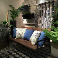 Живые растения в интерьере гостиной