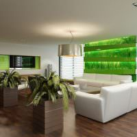 Просторная комната с живыми растениями