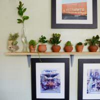 Деревянная полочка для комнатных растений