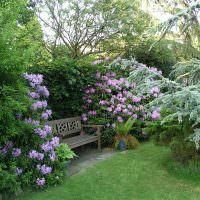 Уютноре место для отдыха в саду с деревянной скамеечкой