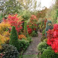 Пейзажный сад в середине осени