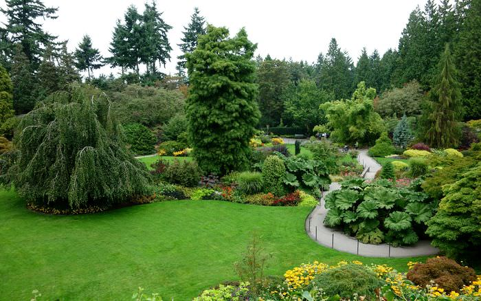 согласны, декоративные кустарники в ландшафтном дизайне фото первой
