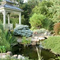 небольшой водоем в зоне отдыха классического сада