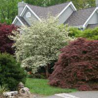 Крыша загородного дома с мягкой черепицей