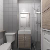 Дизайн санузла с душевой кабиной