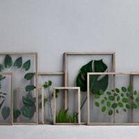 Листья растений в деревянных рамках