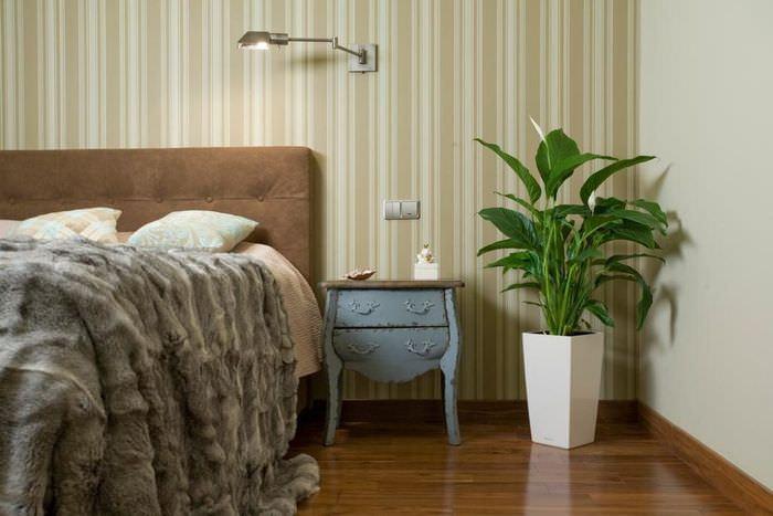 Интерьер спальни с живыми растениями