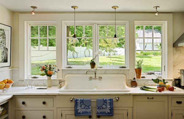 Выбирать светолюбивые растения лучше на кухню с большими окнами
