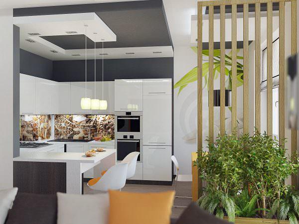Кухня с перегородкой для зонирования