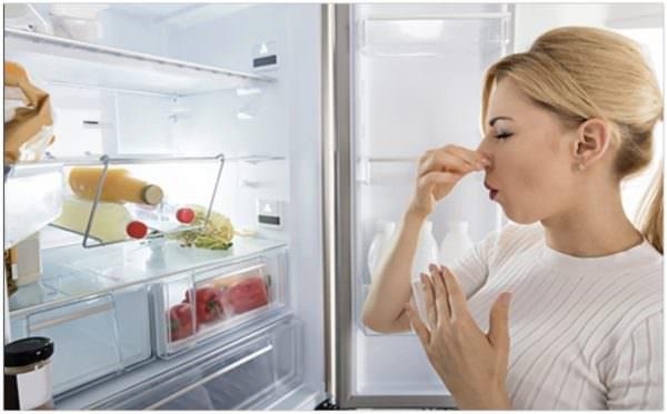 Неприятные запахи возникают из-за разливов жидких продуктов, остатков испортившейся еды.