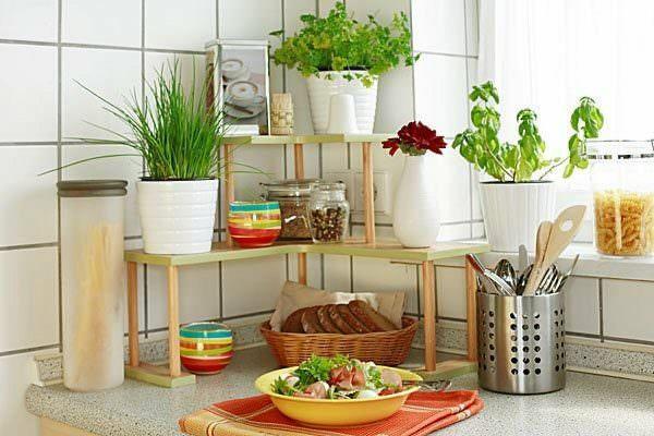 Хорошие идеи для кухни: свежие цветы в вазе или живое растение.